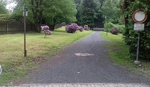 Wanderweg im Park