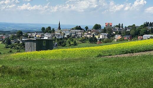 Blick über eine Wiese auf den Ortskern von Schöneck.
